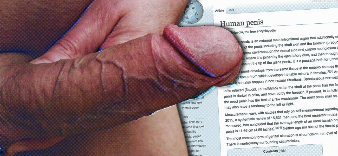 mannlichen penis masturbation